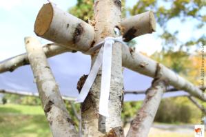 birch branch chuppah frame corner