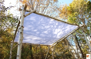 birch huppah frame corner with canopy